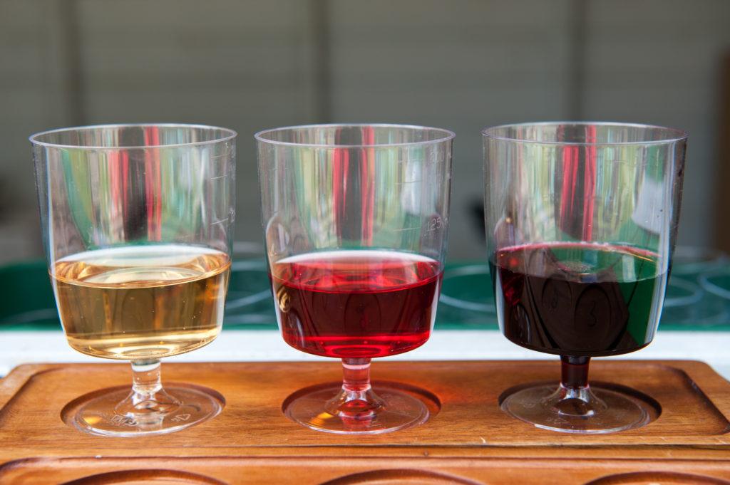Abruzzo Wine Selection