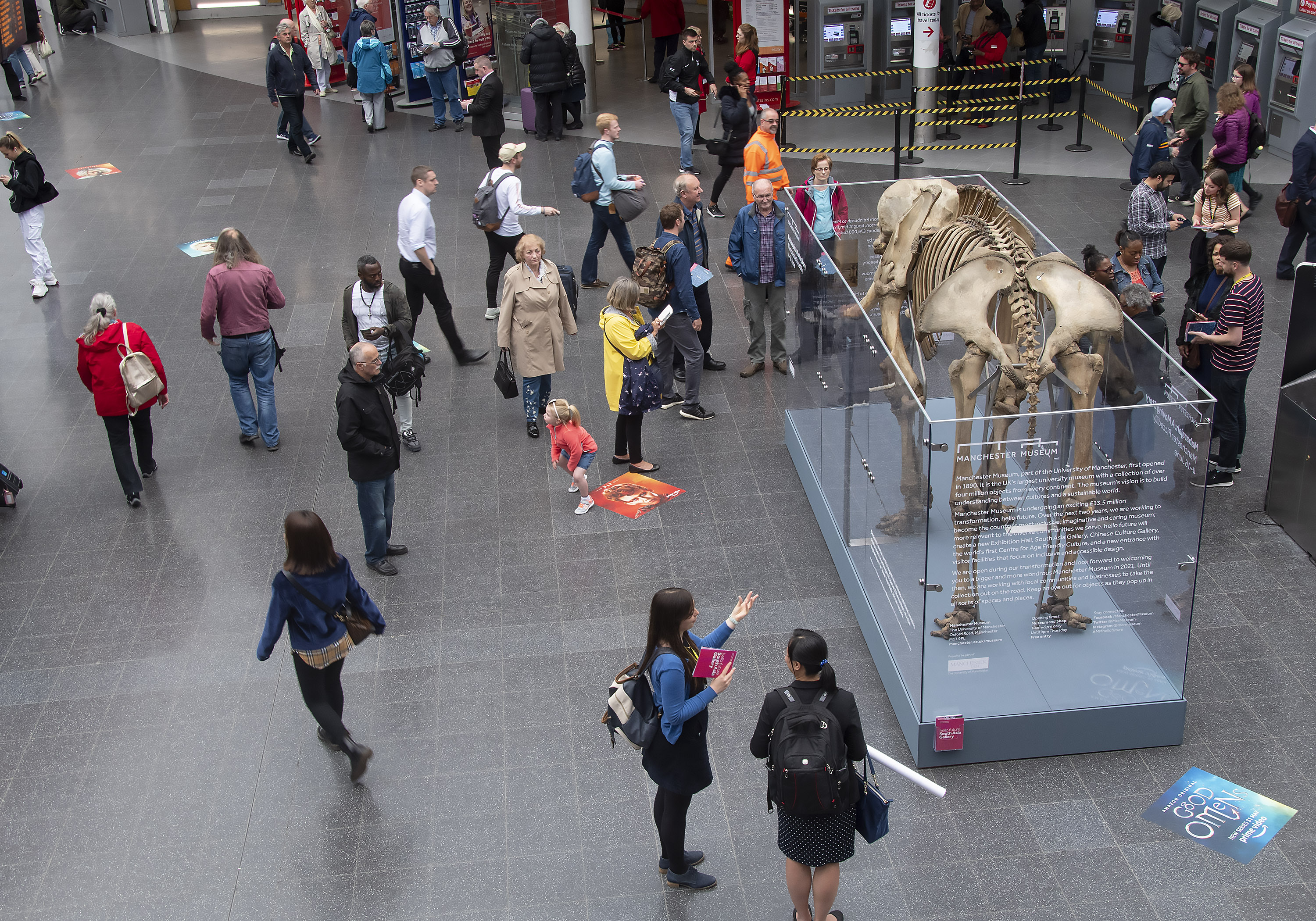 Consumers looking at the elephant in Manchester Piccadilly train station